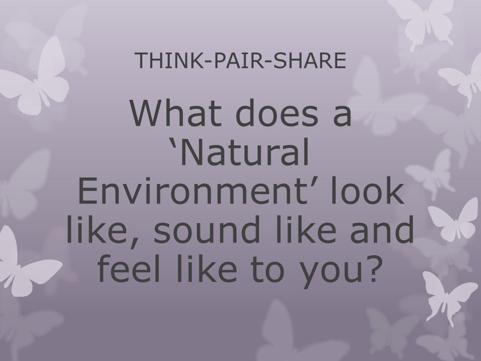 THINK-PAIR-SHARE What does a 'Natural Environment' look like, sound like and feel like to you