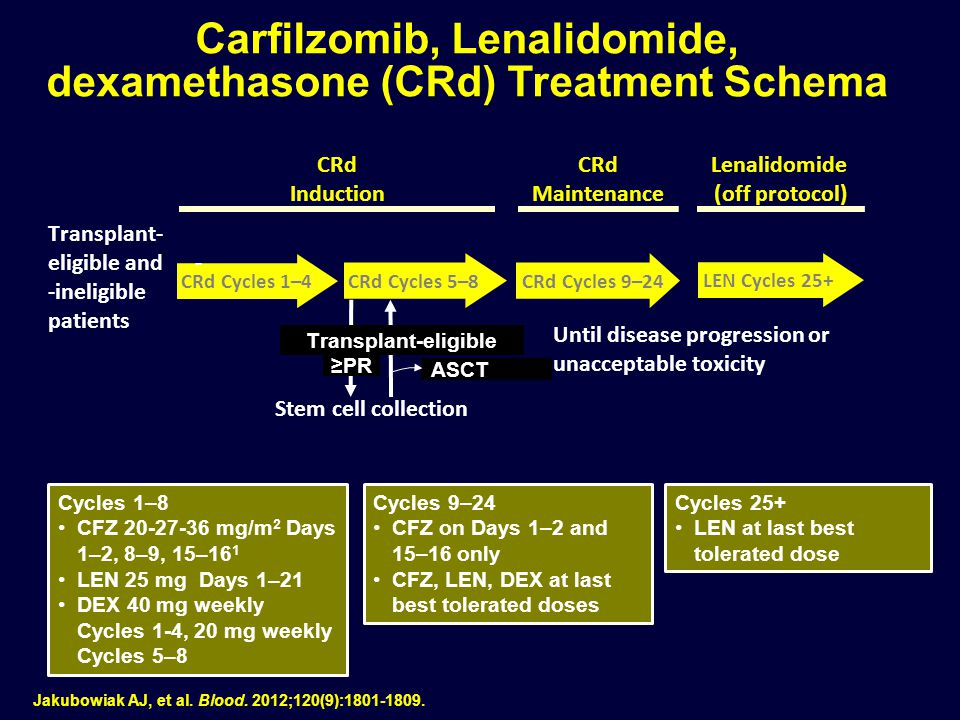 Carfilzomib, Lenalidomide, dexamethasone (CRd) Treatment Schema