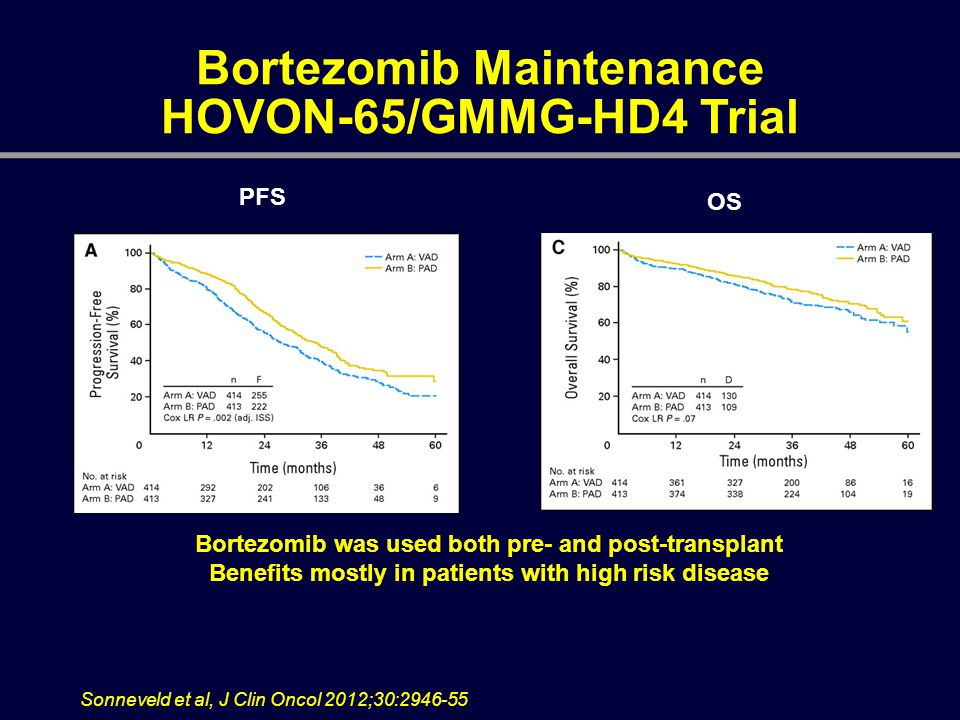 Bortezomib Maintenance HOVON-65/GMMG-HD4 Trial