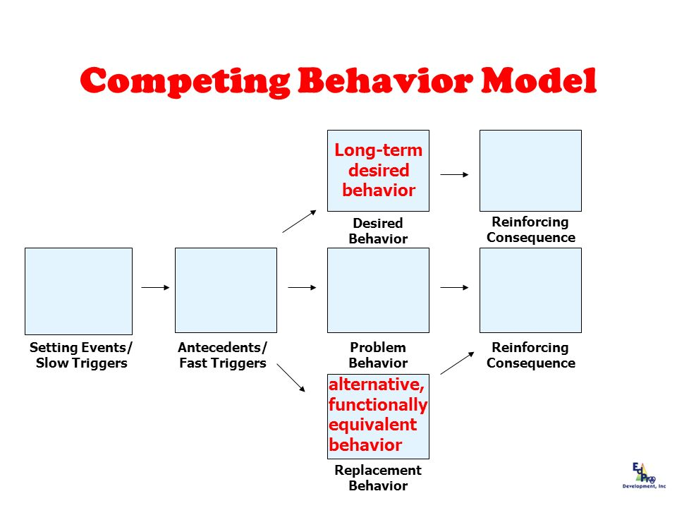 Competing Behavior Model