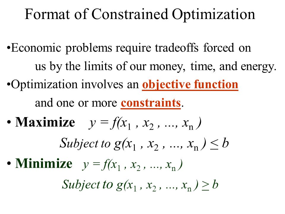 Format of Constrained Optimization