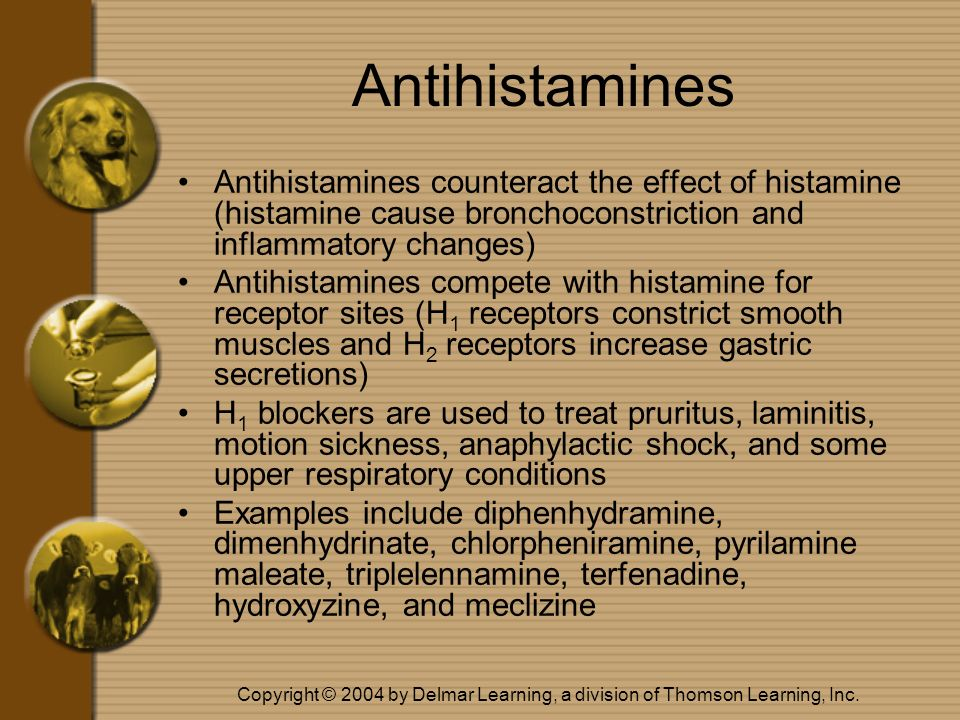 Antihistamines Antihistamines counteract the effect of histamine (histamine cause bronchoconstriction and inflammatory changes)