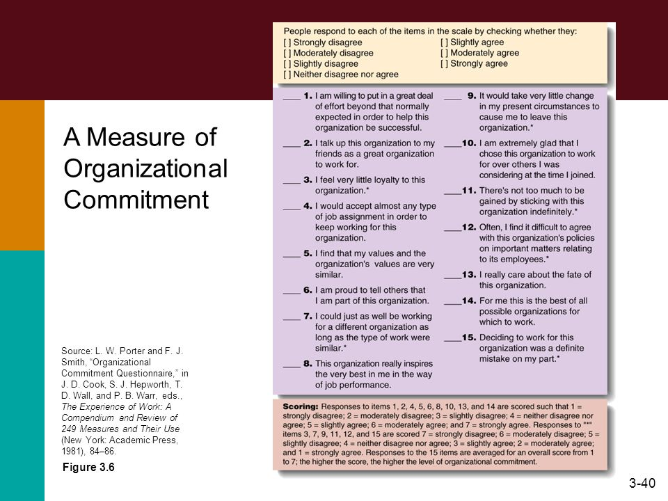 A Measure of Organizational Commitment