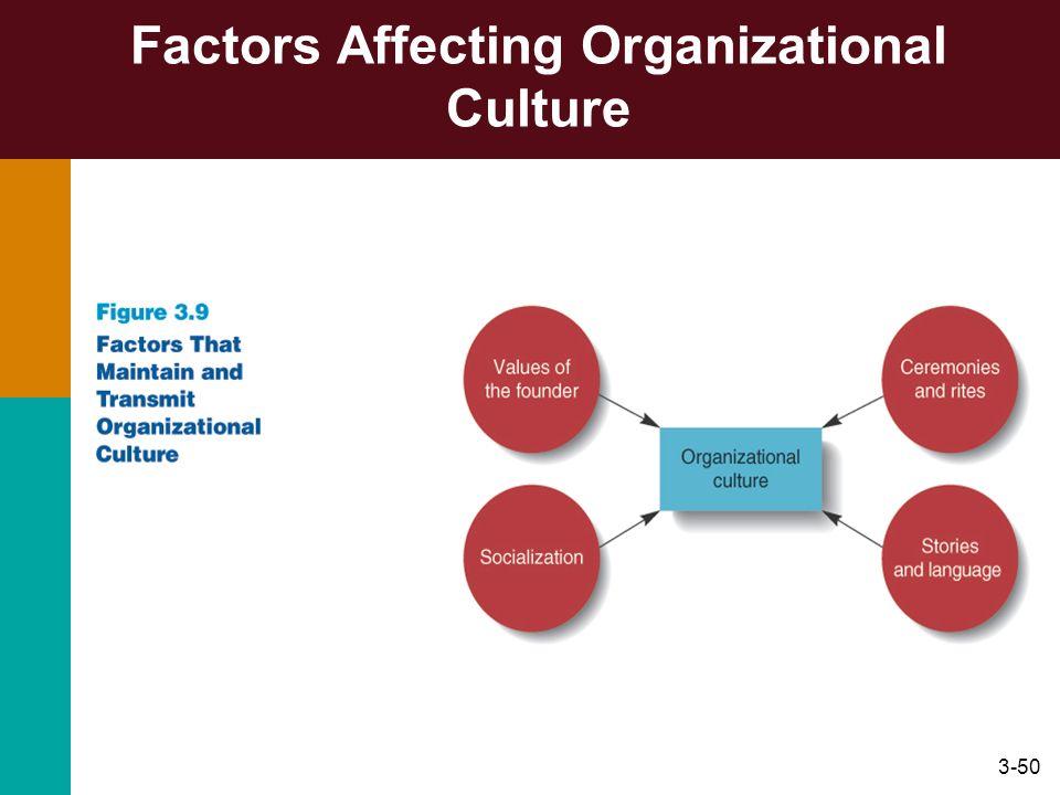 Factors Affecting Organizational Culture