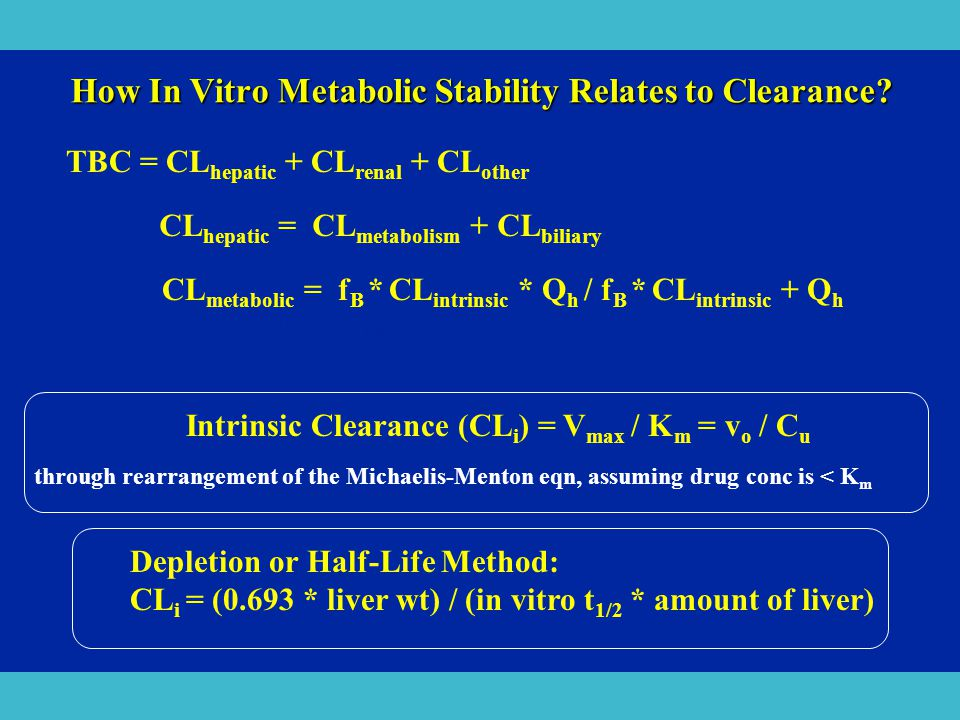How In Vitro Metabolic Stability Relates to Clearance