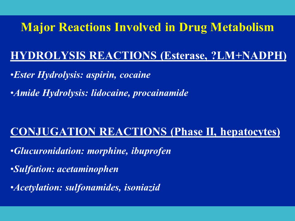 Major Reactions Involved in Drug Metabolism