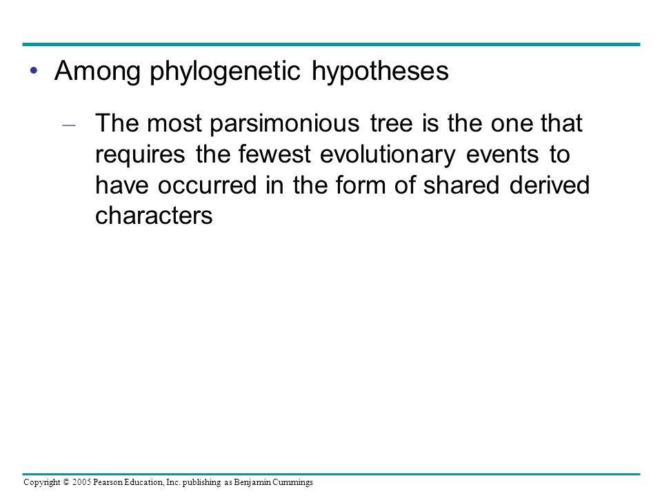 Among phylogenetic hypotheses
