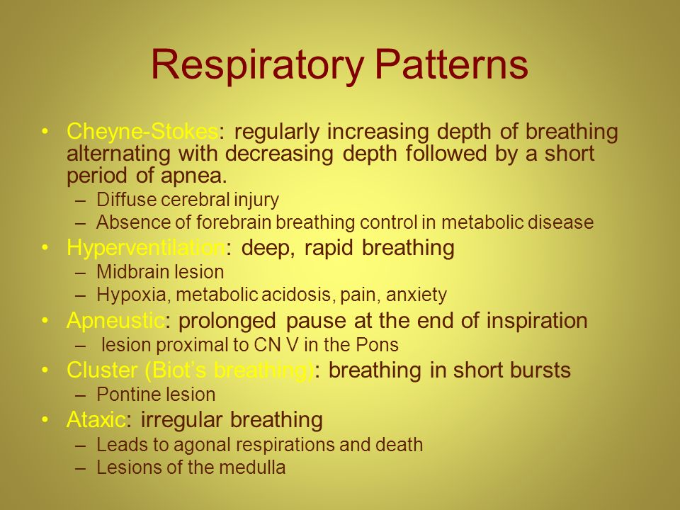 Respiratory Patterns Cheyne-Stokes: regularly increasing depth of breathing alternating with decreasing depth followed by a short period of apnea.