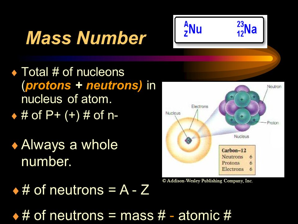 Mass Number Always a whole number. # of neutrons = A - Z