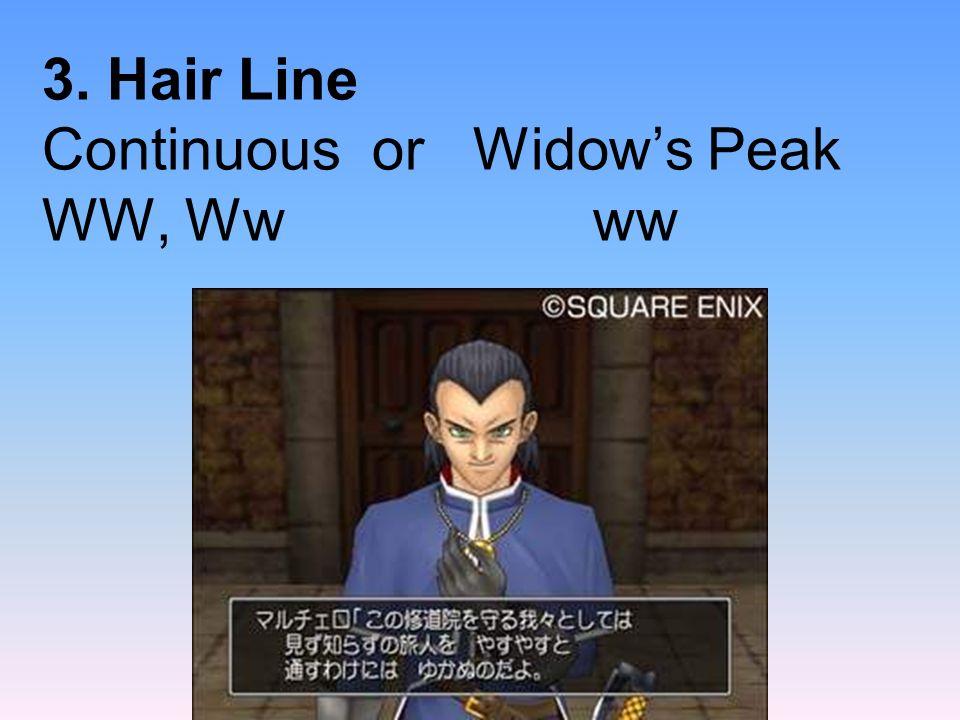 3. Hair Line Continuous or Widow's Peak WW, Ww ww