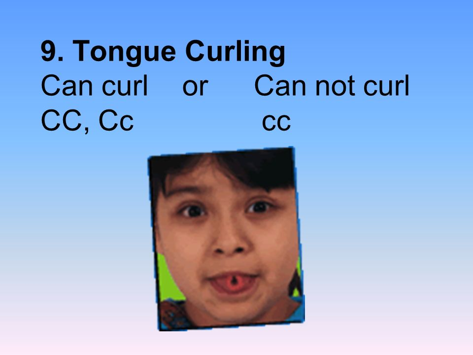 9. Tongue Curling Can curl or Can not curl CC, Cc cc
