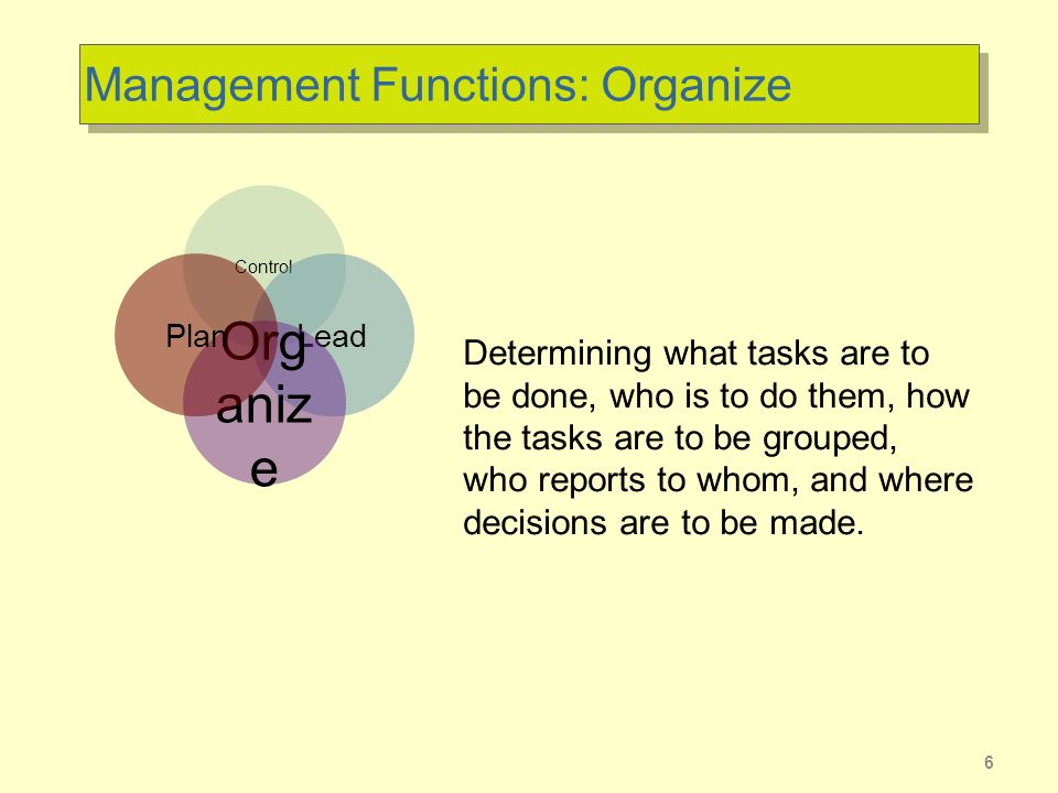 Management Functions: Organize