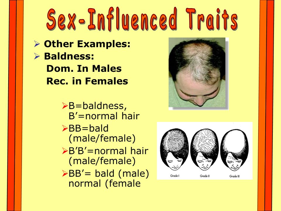 Sex-Influenced Traits