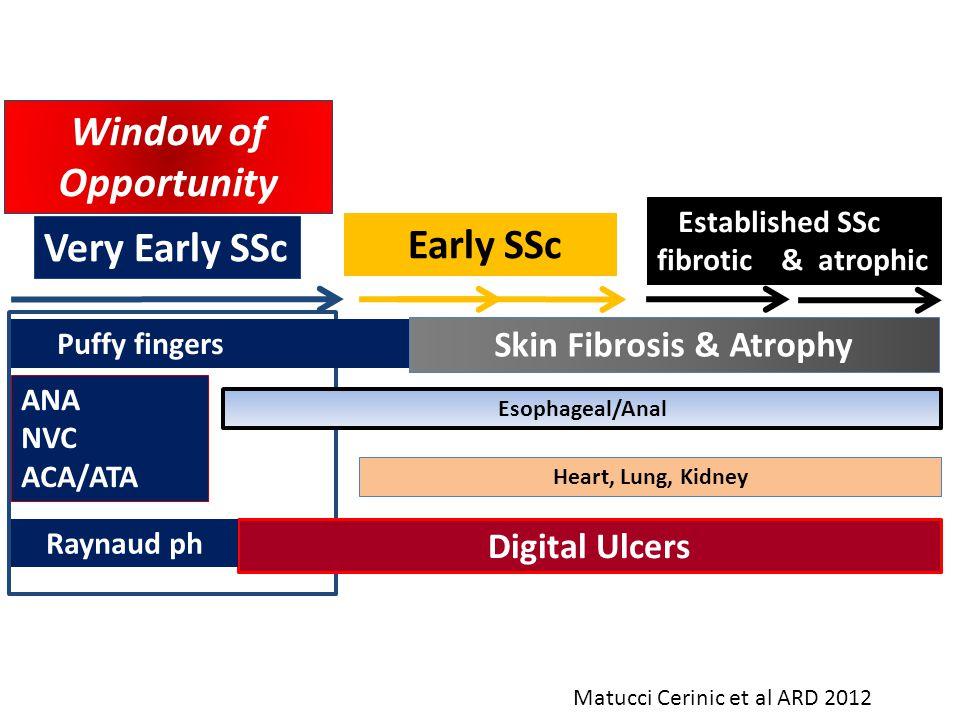Skin Fibrosis & Atrophy
