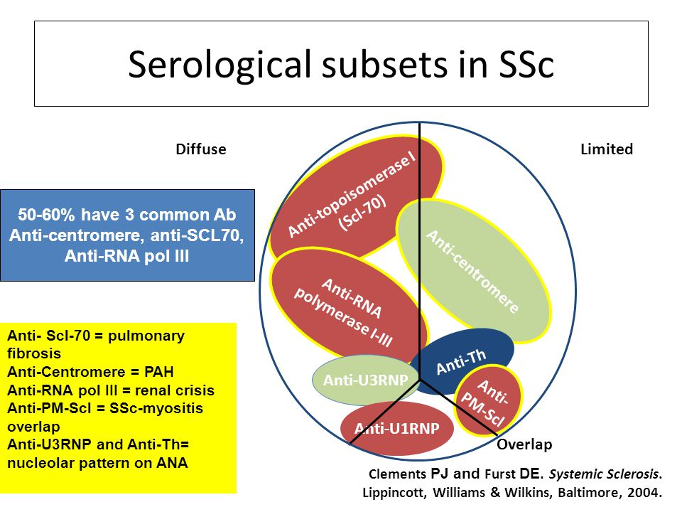 Serological subsets in SSc