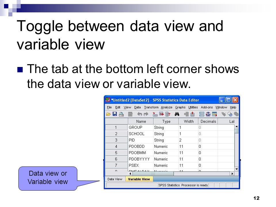 Toggle between data view and variable view