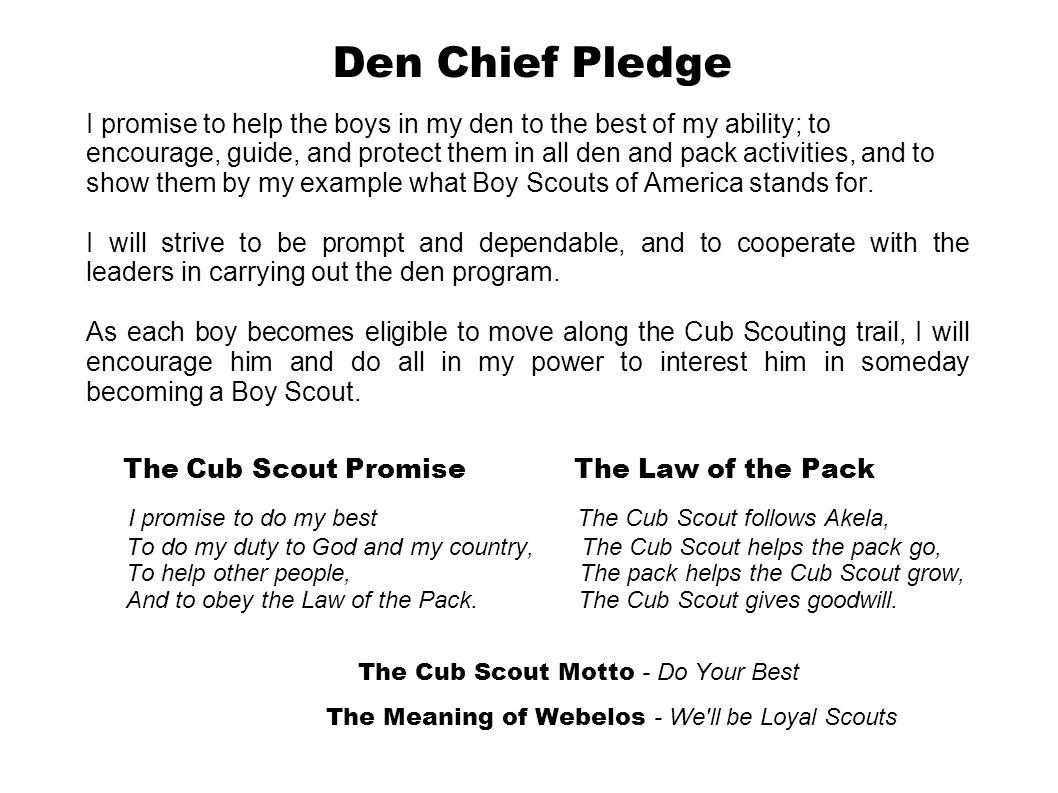 Den Chief Pledge