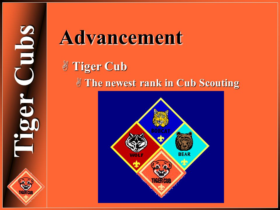 Advancement Tiger Cub The newest rank in Cub Scouting