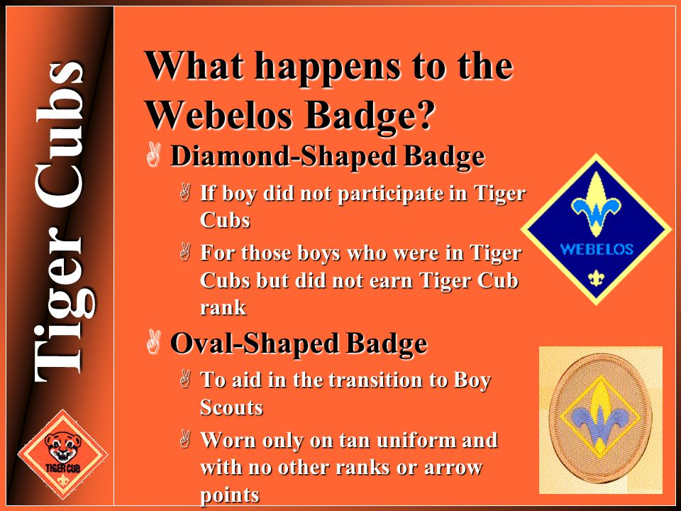 What happens to the Webelos Badge