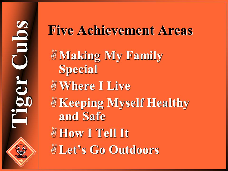Five Achievement Areas