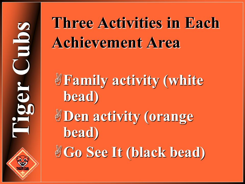 Three Activities in Each Achievement Area