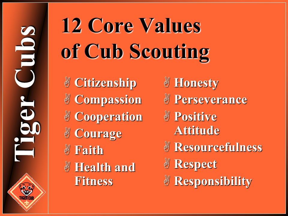 12 Core Values of Cub Scouting