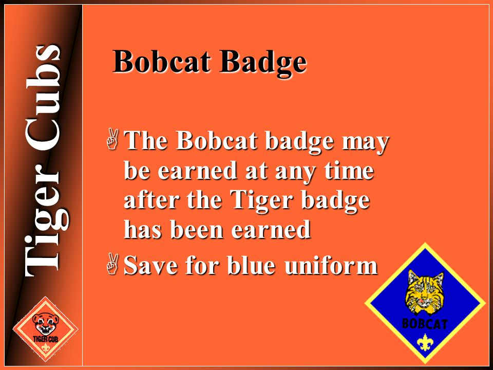 Bobcat Badge The Bobcat badge may be earned at any time after the Tiger badge has been earned. Save for blue uniform.