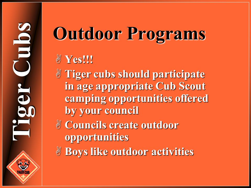Outdoor Programs Yes!!! Tiger cubs should participate in age appropriate Cub Scout camping opportunities offered by your council.