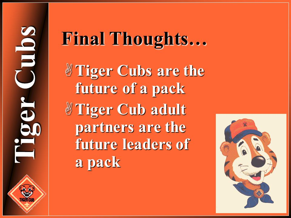 Final Thoughts… Tiger Cubs are the future of a pack