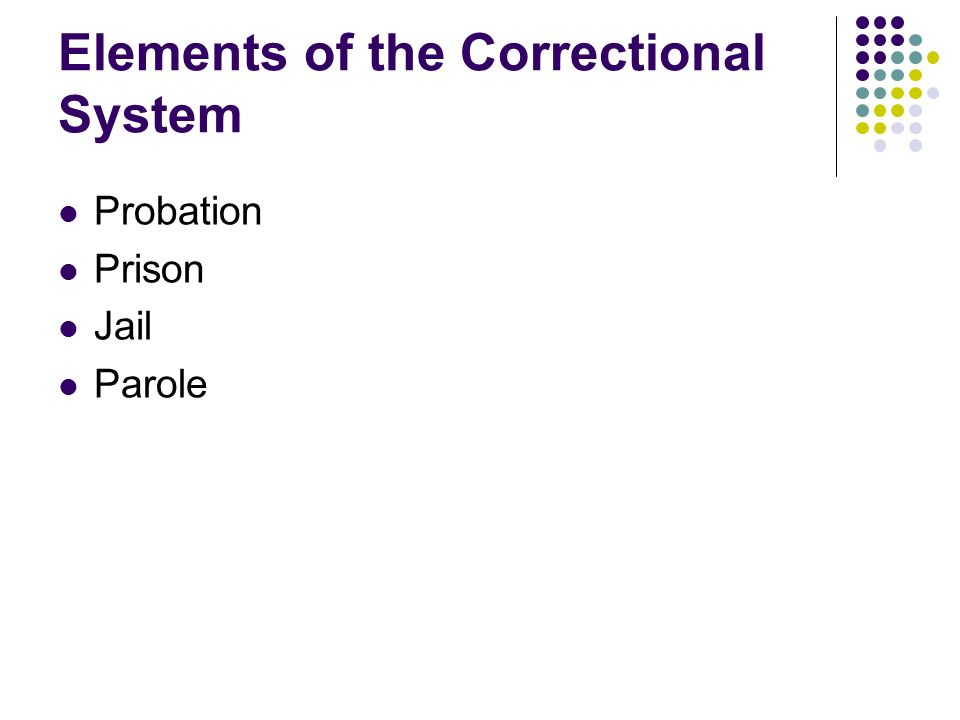 Elements of the Correctional System