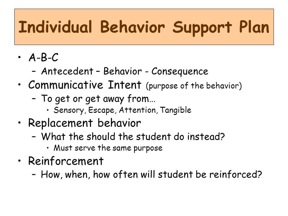 Individual Behavior Support Plan