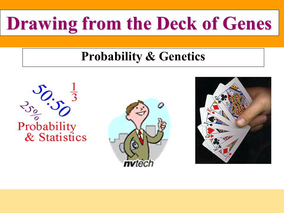 Probability & Genetics - ppt video online download