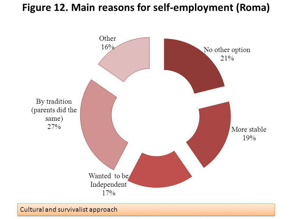 Figure 12. Main reasons for self-employment (Roma)