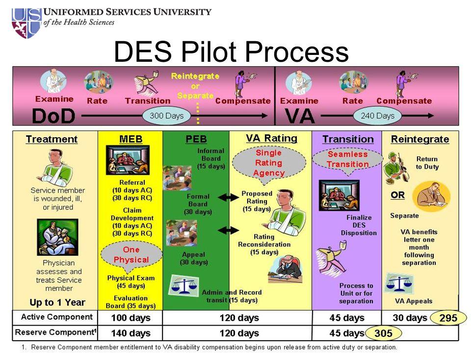 DES Pilot Process