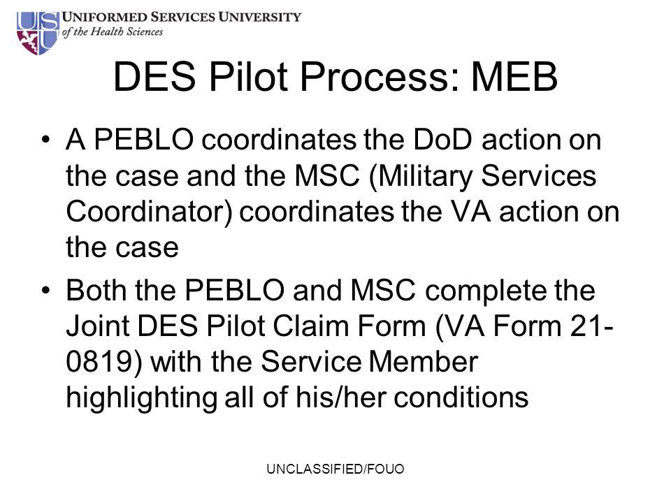 DES Pilot Process: MEB
