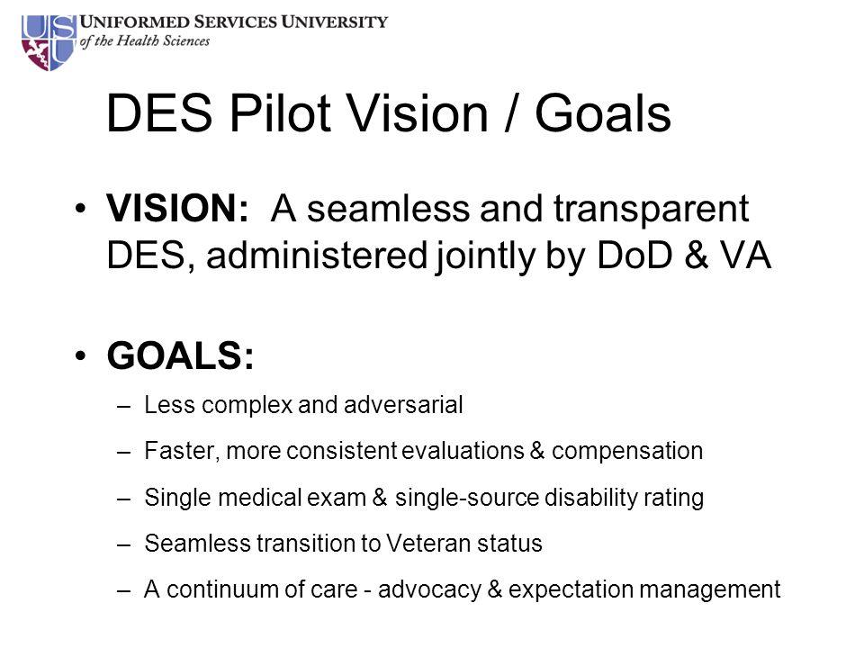 DES Pilot Vision / Goals