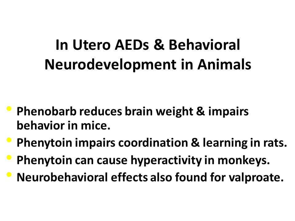 In Utero AEDs & Behavioral Neurodevelopment in Animals