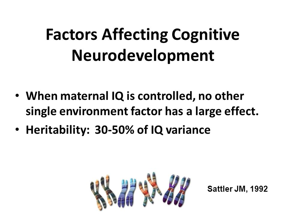 Factors Affecting Cognitive Neurodevelopment
