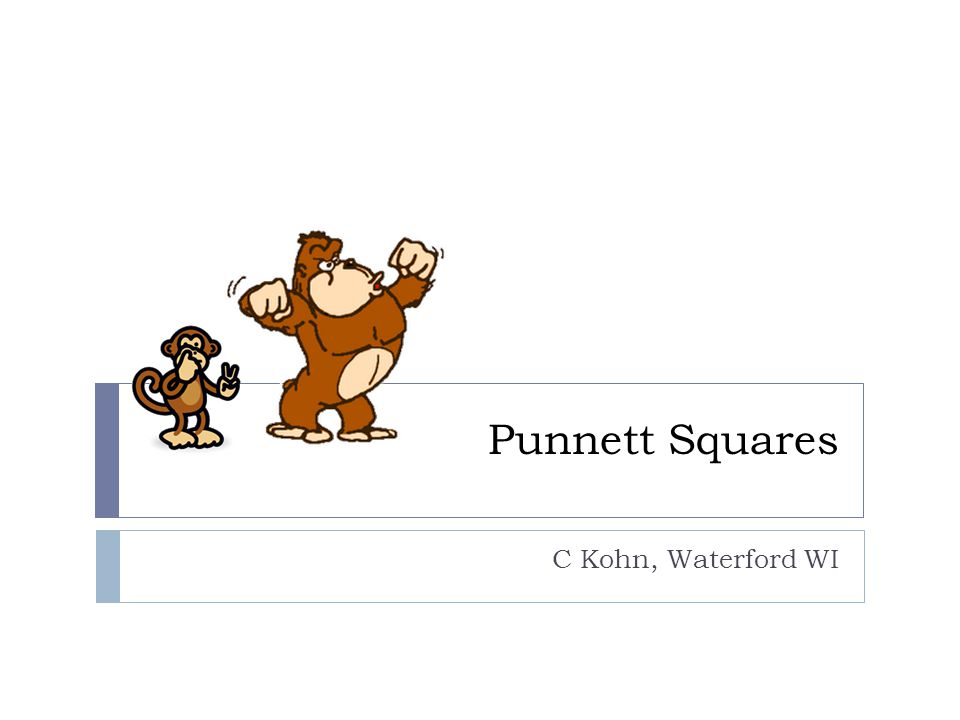 Punnett Squares C Kohn, Waterford WI