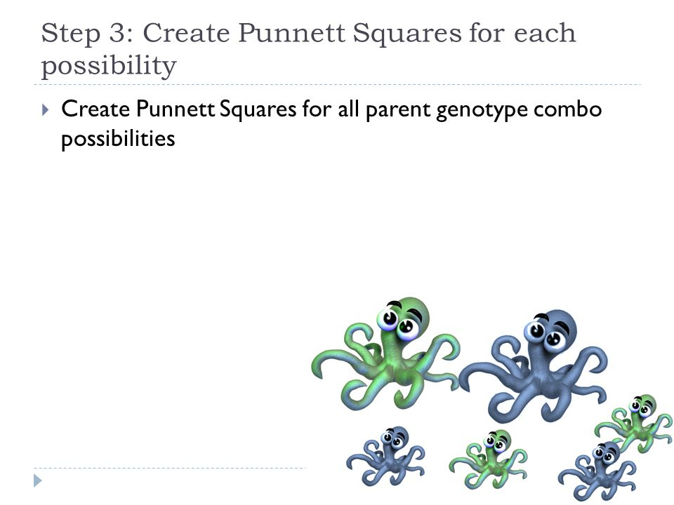 Step 3: Create Punnett Squares for each possibility