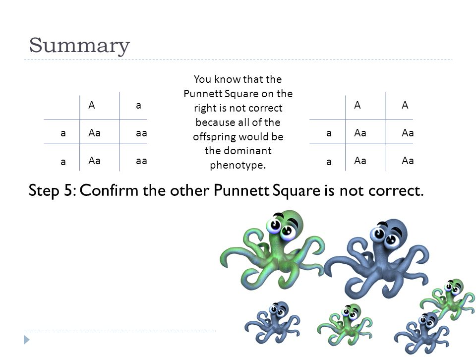 Summary Step 5: Confirm the other Punnett Square is not correct.