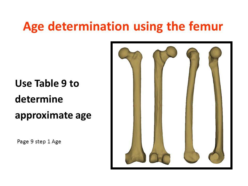 Age determination using the femur
