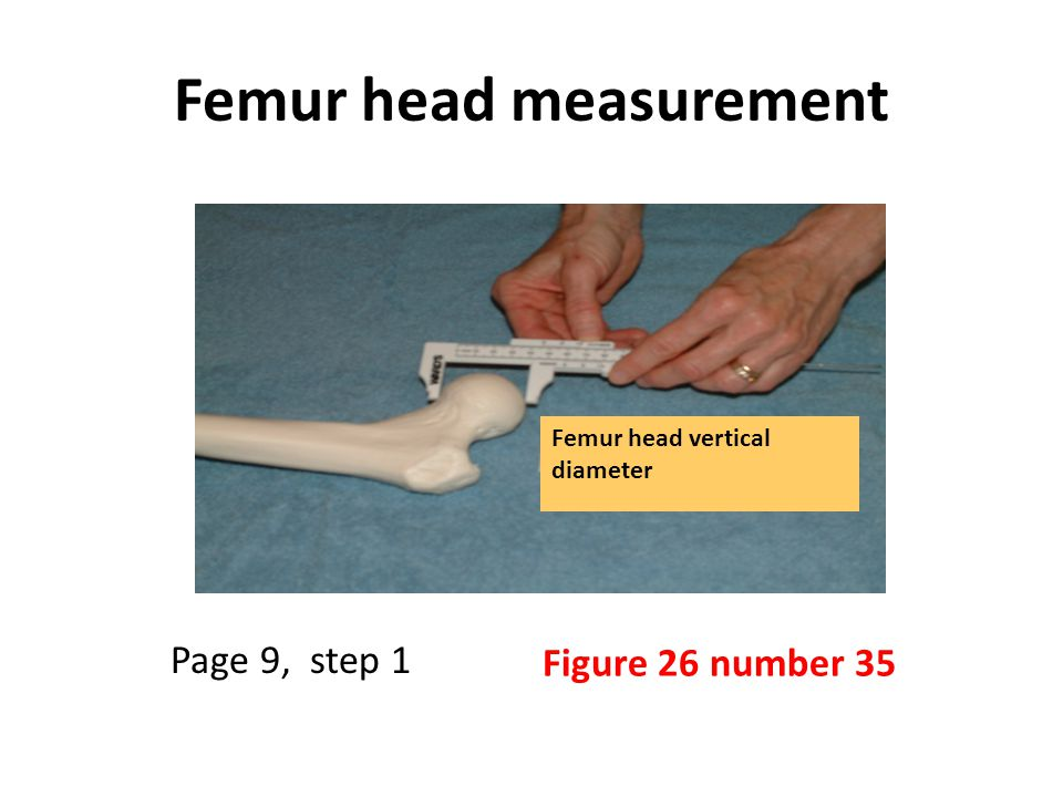 Femur head measurement