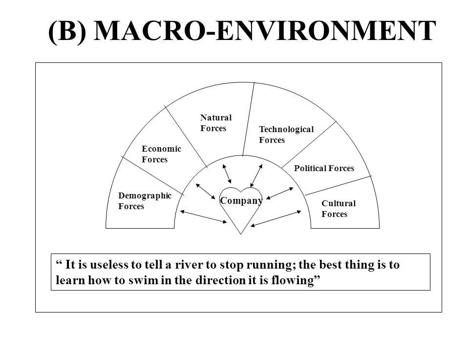 (B) MACRO-ENVIRONMENT