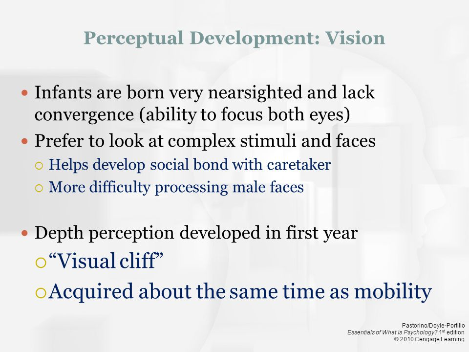 Perceptual Development: Vision