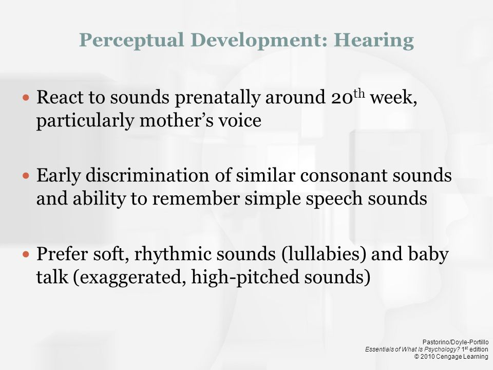 Perceptual Development: Hearing