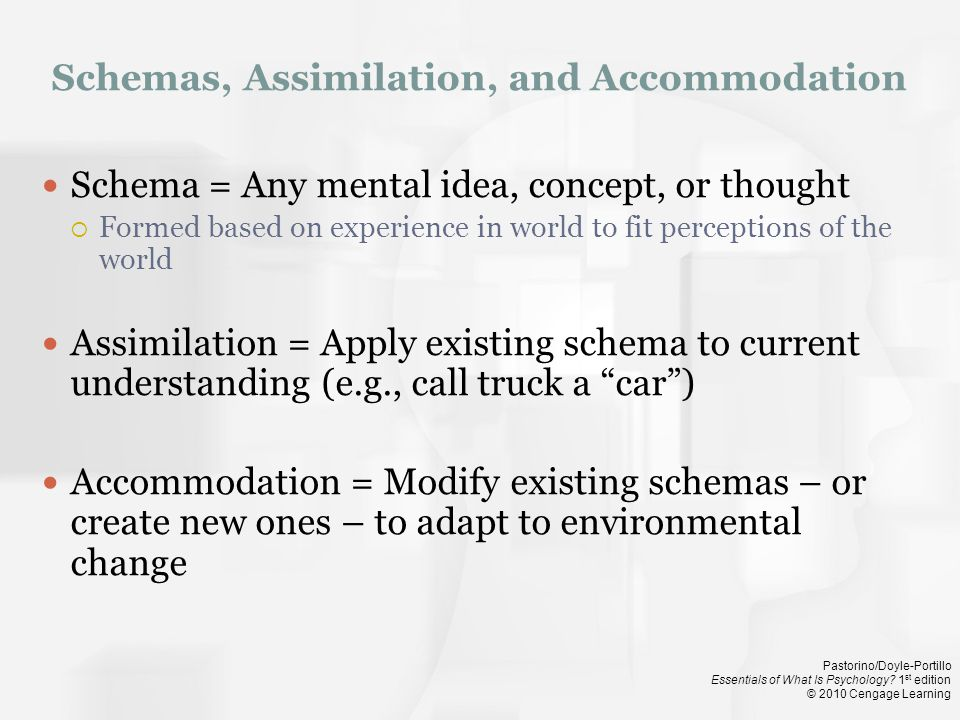 Schemas, Assimilation, and Accommodation