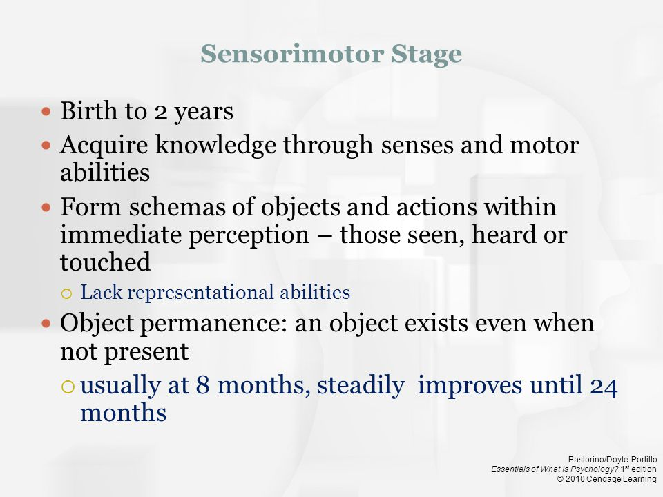 Acquire knowledge through senses and motor abilities
