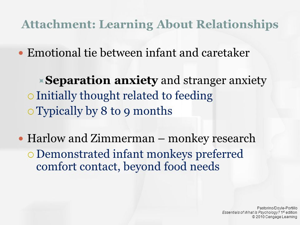 Attachment: Learning About Relationships
