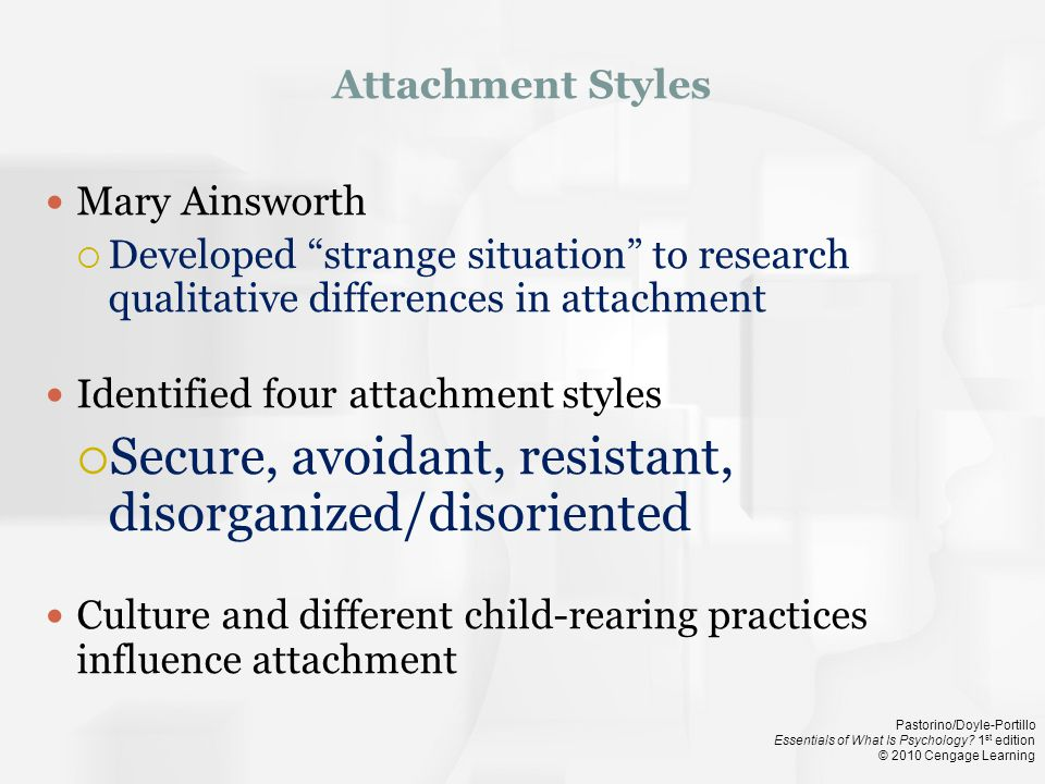 Secure, avoidant, resistant, disorganized/disoriented